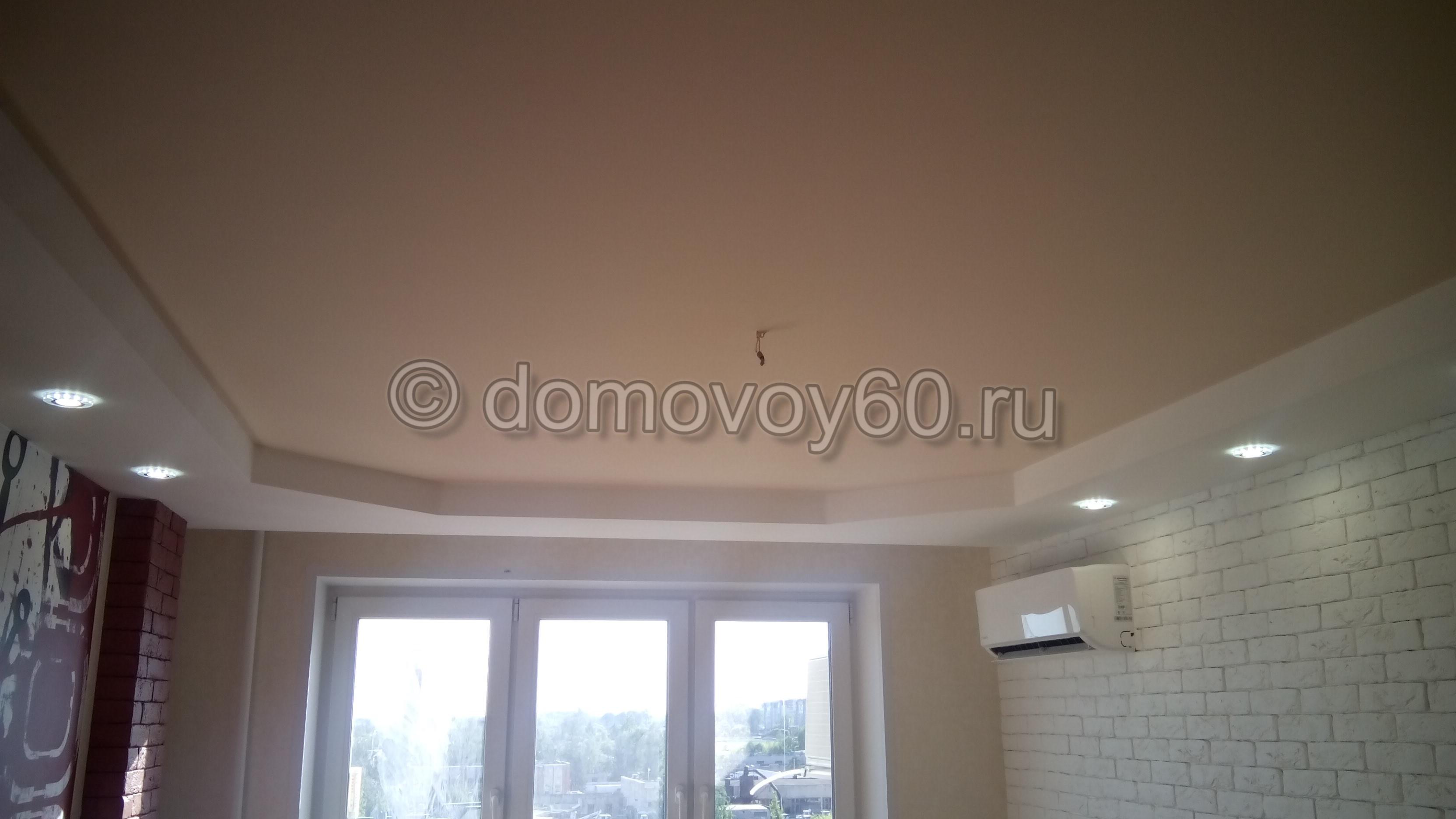 domovoy60-042