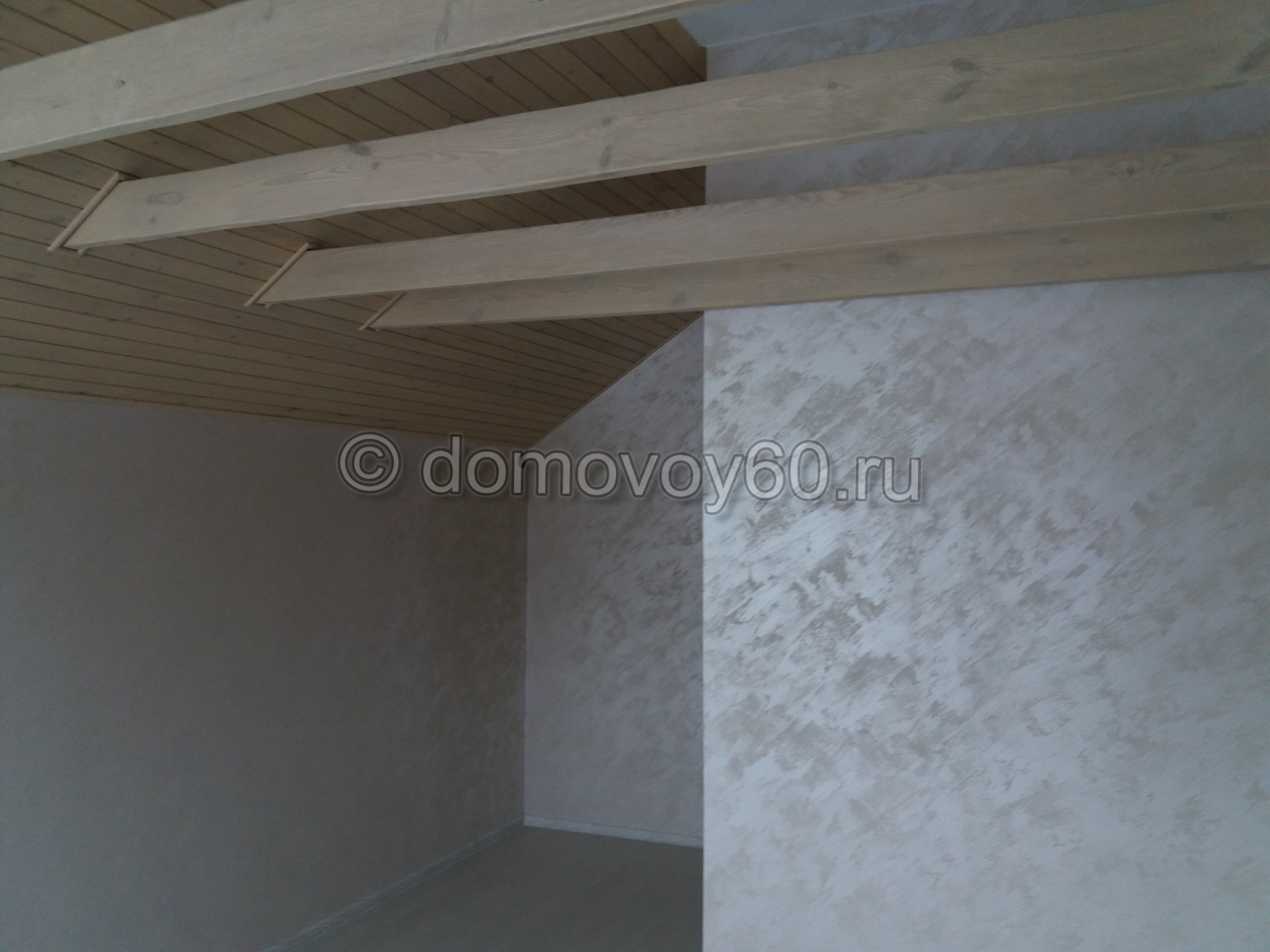 domovoy60-044