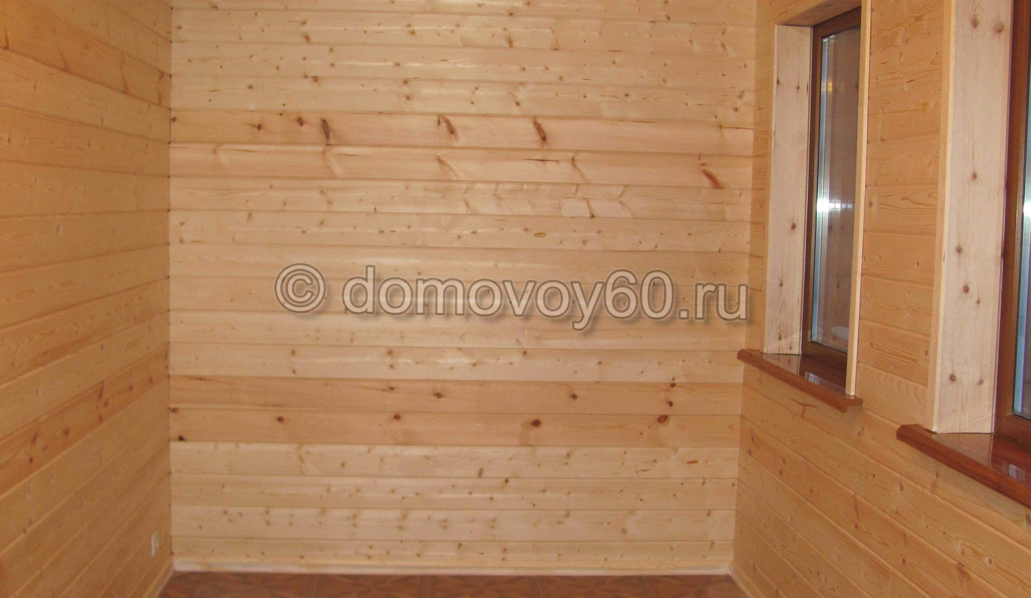 domovoy60-056