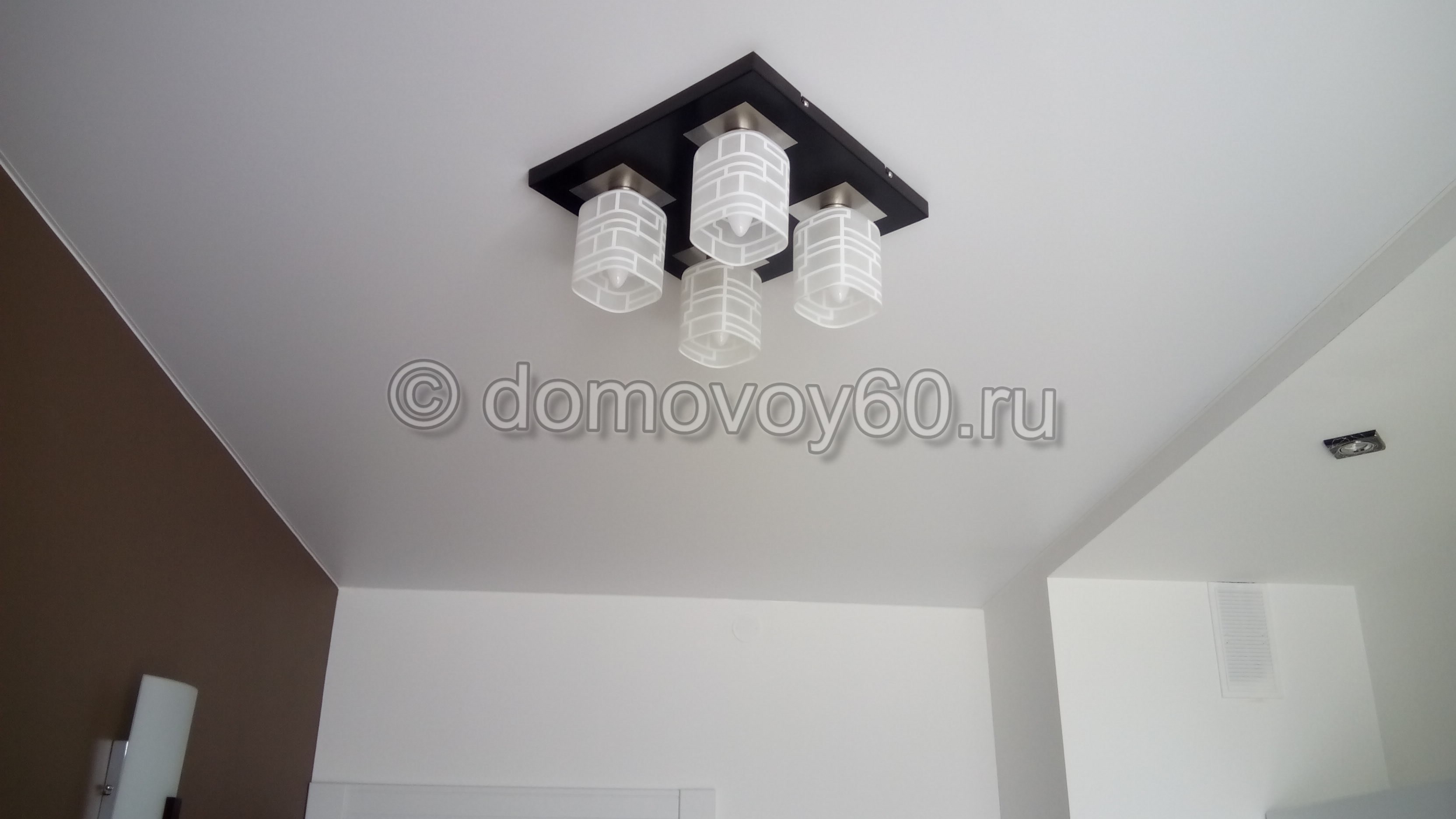 domovoy60-086