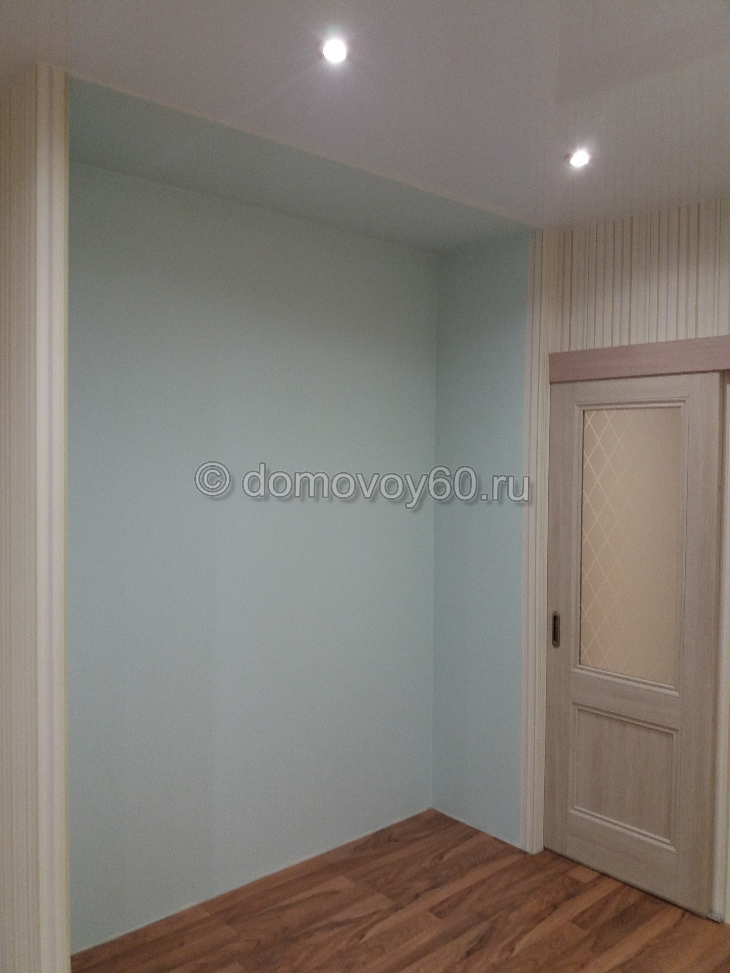 domovoy60-094