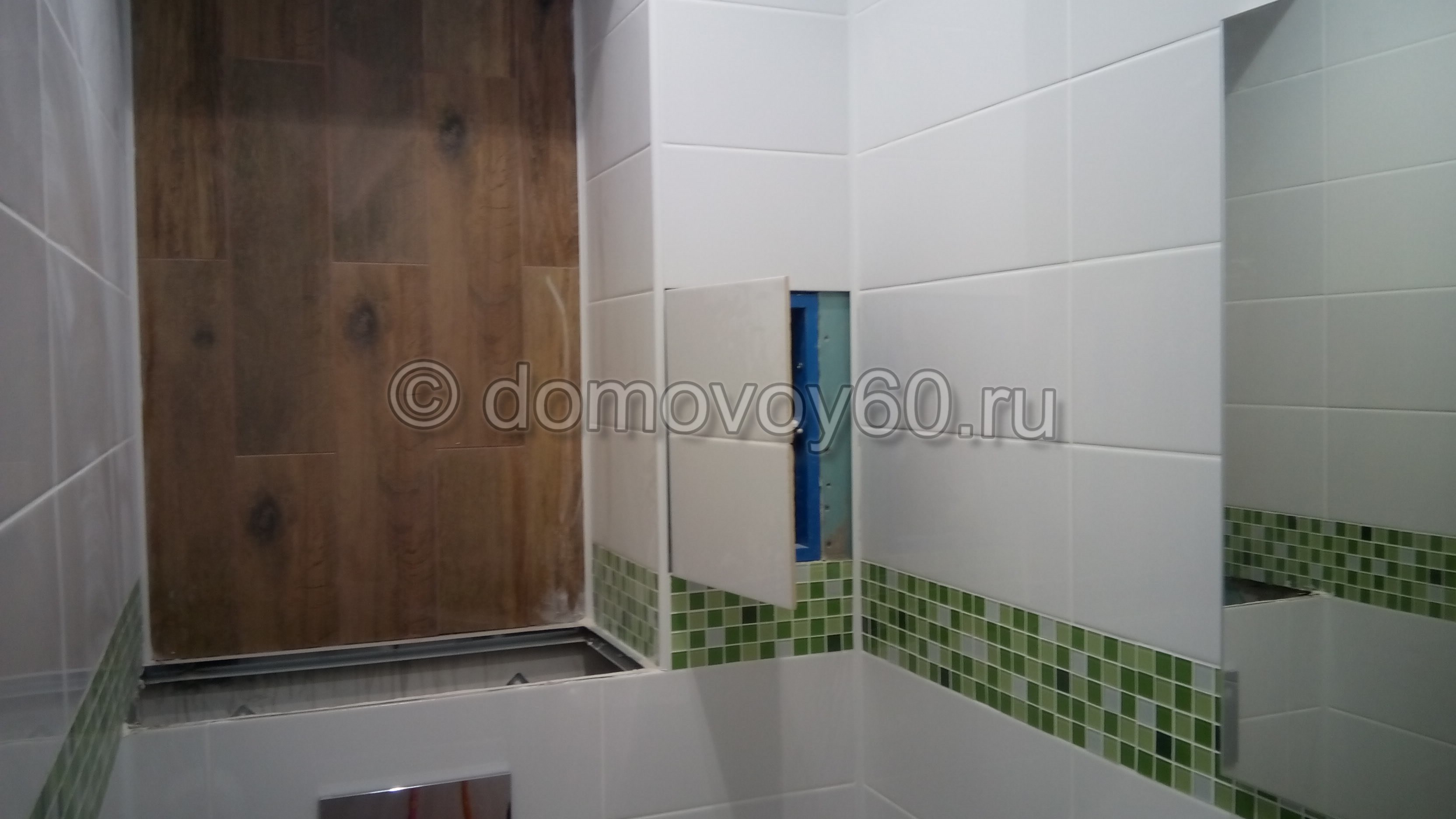 domovoy60-109
