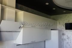 domovoy60-011