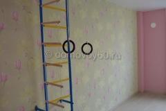 domovoy60-026