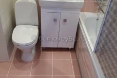 domovoy60-038