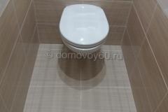 domovoy60-059
