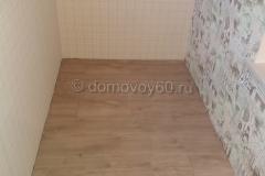 domovoy60-062
