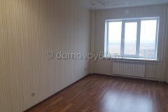 domovoy60-068