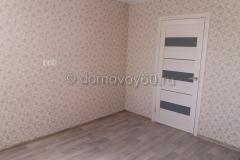 domovoy60-073